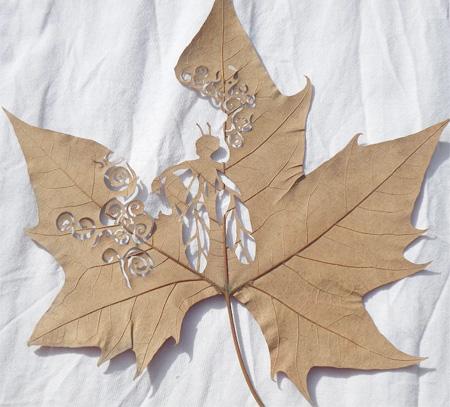 leaf02