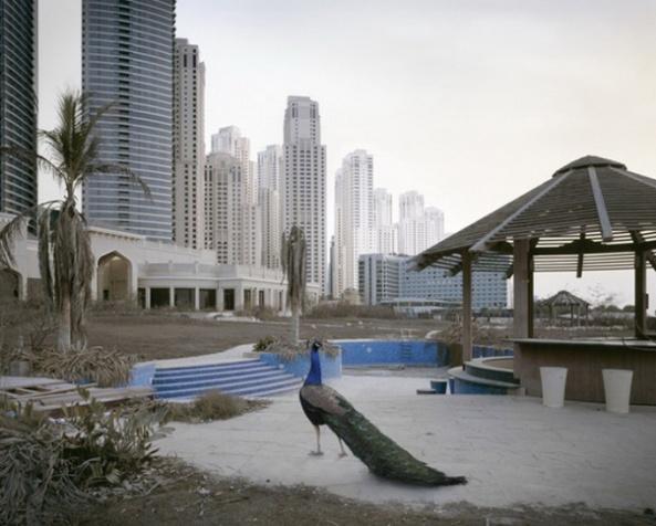 """Abandoned Dubai"" par Richard Allenby-Pratt (3)"
